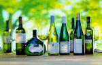 Подарок вино Рислинг