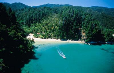 Вид пляжа в Новой Зеландии